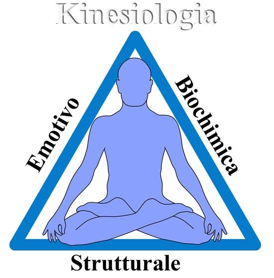 Kinesiologia: Le tecniche di correzione e riequilibrio dei tre aspetti principali che concorrono a formare il triangolo della salute: mentale/emotivo, biochimico/nutrizionale e strutturale.